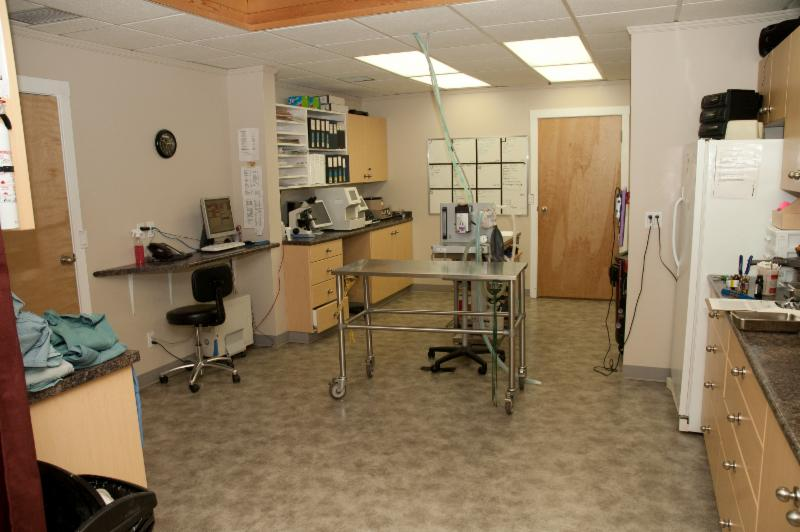 Fort Saskatchewan Veterinary Clinic Ltd - Photo 3