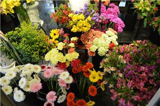 Vernon Flower Shop - Photo 7