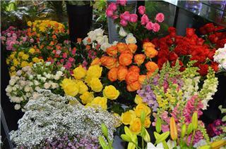 Vernon Flower Shop - Photo 8