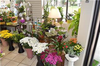 Vernon Flower Shop - Photo 2