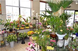 Vernon Flower Shop - Photo 4