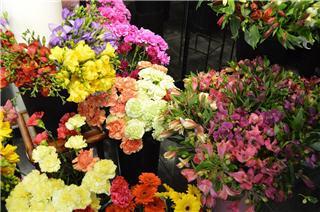 Vernon Flower Shop - Photo 9