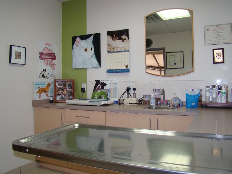 Hôpital Vétérinaire Taché - Photo 10