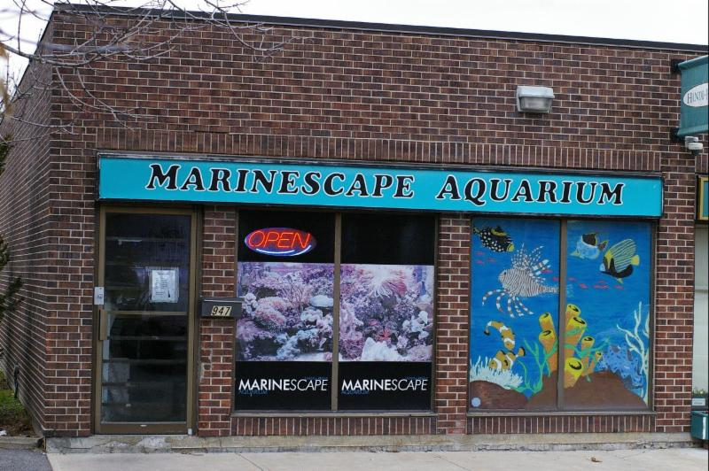 Marinescape Aquarium - Photo 1