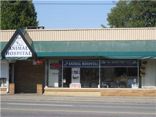 Oak Animal Hospital - Photo 2