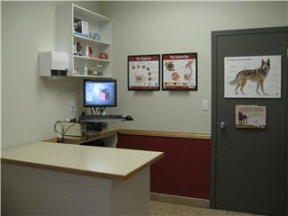 Oak Animal Hospital - Photo 11