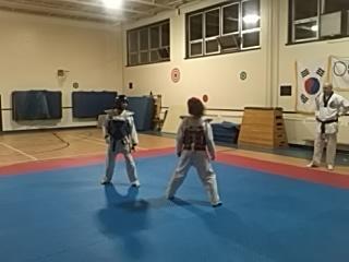 Ecole de Taekwondo Luc Mercier (W T F style Olympique) - Photo 3