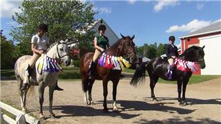 Centaur Riding School Navan On 3845 Frank Kenny Rd