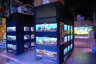 Big Al's Aquarium Supercentres - Photo 6