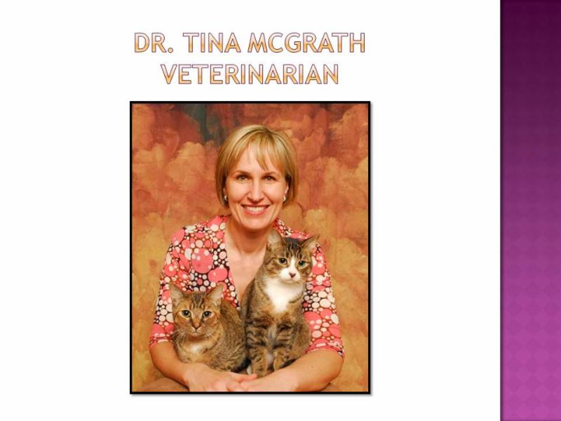 Glanbrook Veterinary Services - Photo 6
