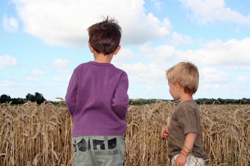 Société de l'aide à l'enfance d'Ottawa - Photo 5