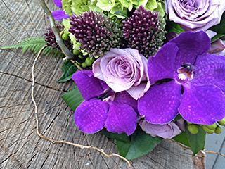 Fleurs ILLICO (Les) - Photo 1