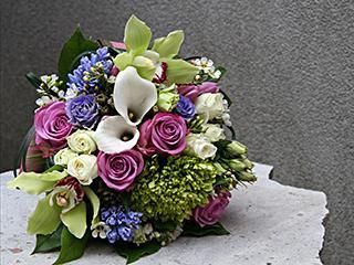 Fleurs ILLICO (Les) - Photo 9
