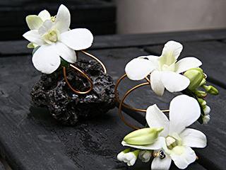 Fleurs ILLICO (Les) - Photo 7