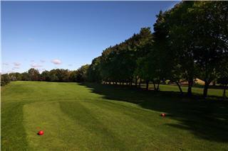 Club De Golf UFO - Photo 8