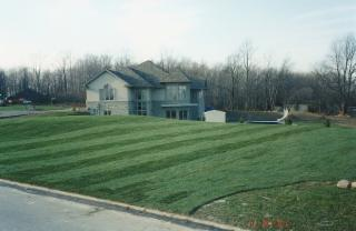 Brayford Sod Farms Inc - Photo 5