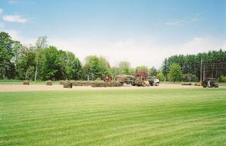 Brayford Sod Farms Inc - Photo 6