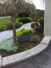 Brayford Sod Farms Inc - Photo 9