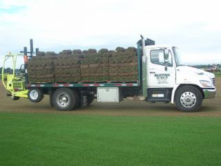 Brayford Sod Farms Inc - Photo 4