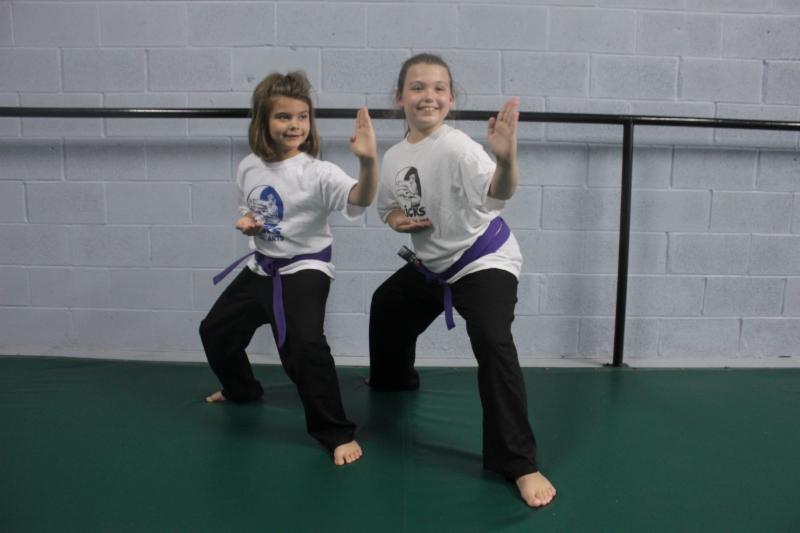 Kicks Martial Arts - Photo 5