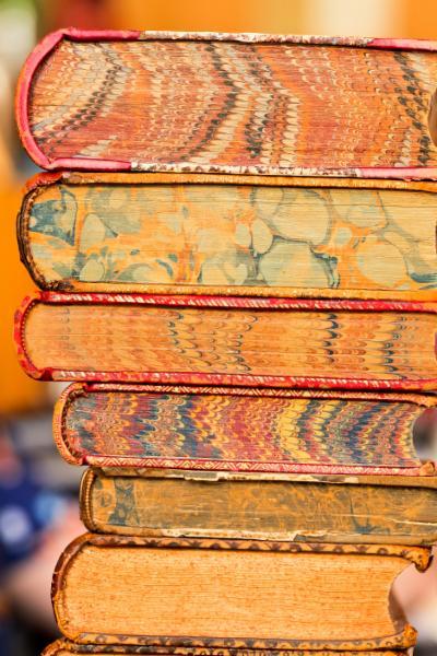 Bison Books - Photo 7