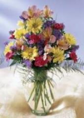 Fleuriste Maisonneuve - Photo 6