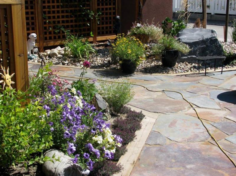 Pinnacle Plants & Contracting Ltd - Photo 3