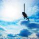 Tundra Helicopters Ltd - Affrètement et location d'avions et de jets privés - 867-536-7858