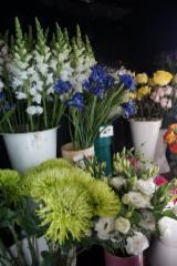 Fleuriste Hollandia - Photo 4