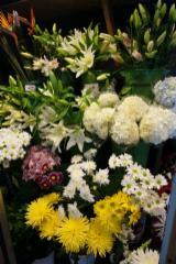 Fleuriste Hollandia - Photo 1