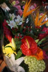 Fleuriste Hollandia - Photo 8