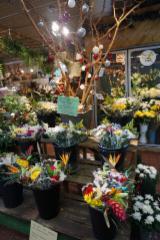 Fleuriste Hollandia - Photo 2