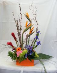 Grower Direct Fresh Cut Flowers - Photo 8