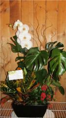 Fleuriste Ambiance Florale - Photo 5