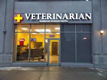 Humber Bay Veterinary Hospital - Photo 3