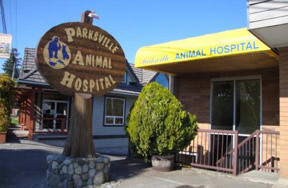 Parksville Animal Hospital - Photo 7