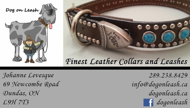 Dog on Leash - Photo 1