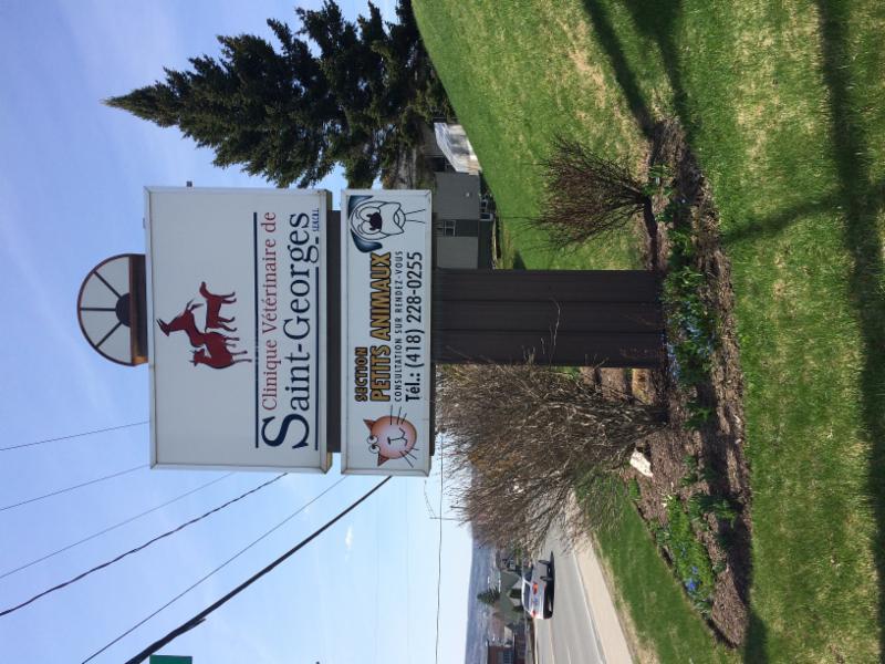 Clinique Vétérinaire de St-Georges - Photo 1