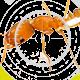Morin Extermination - Extermination et fumigation - 514-239-3556