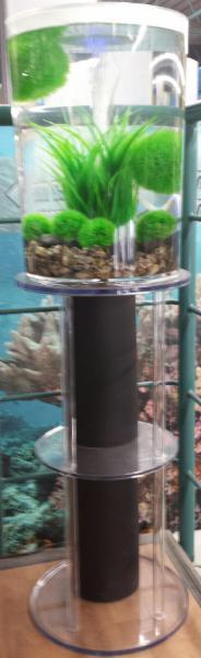 Animalerie Aquarium Drummond - Photo 5