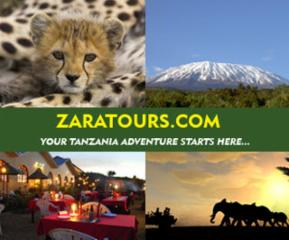 ZaraTours Inc - Photo 7