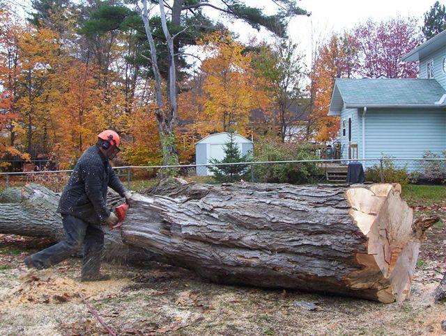 Dan The Wood Man Washago On 3068 Brady Dr Canpages