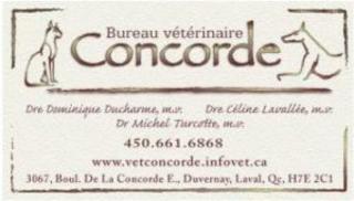 Bureau Vétérinaire Concorde - Photo 1