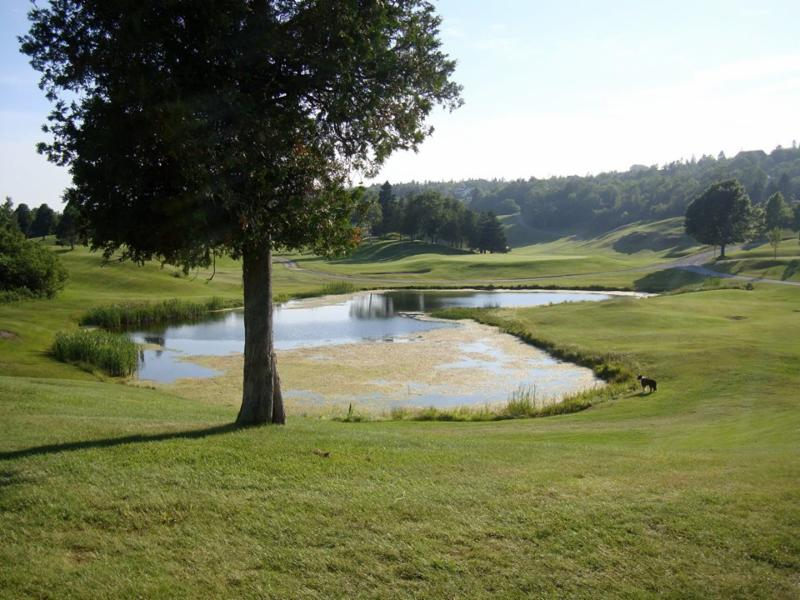 Rockwood Park Golf Course - Photo 5