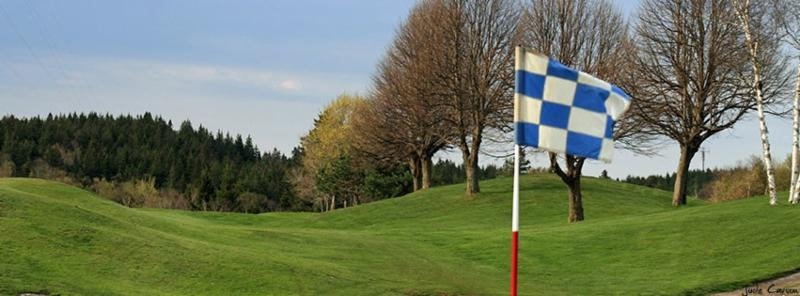 Rockwood Park Golf Course - Photo 10