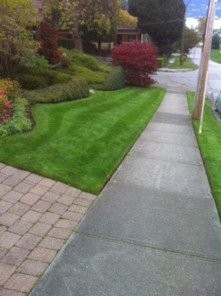 Staples Landscaping - Photo 4
