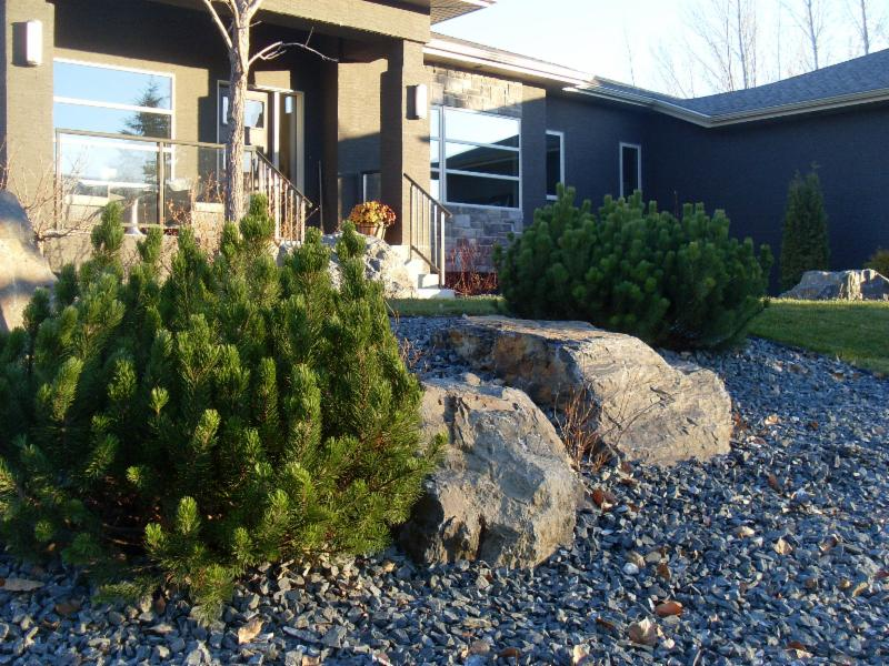 Galay Landscaping - Photo 10