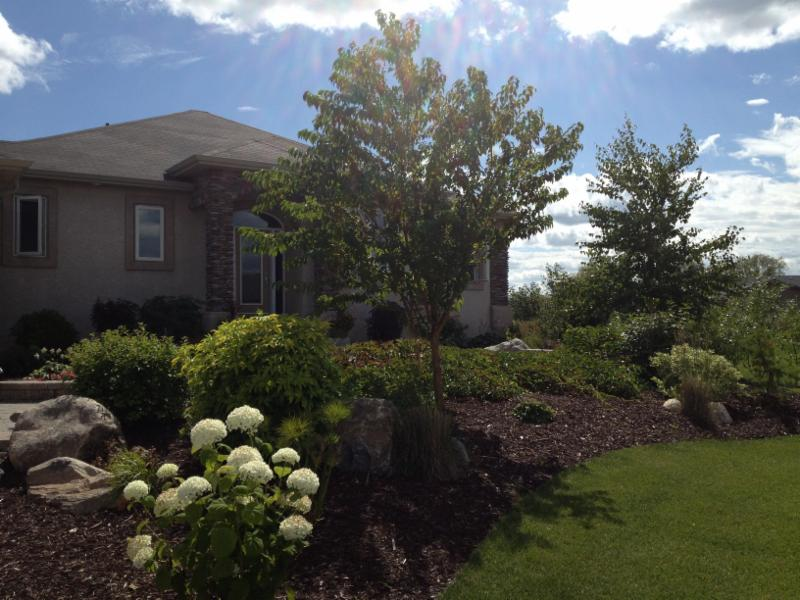Galay Landscaping - Photo 8