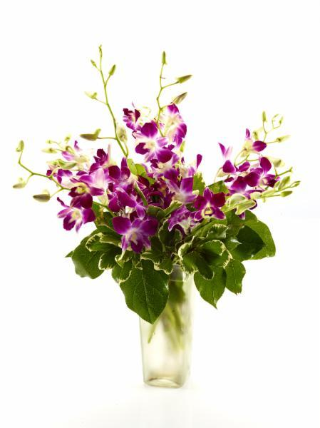 Brant Florist - Photo 1