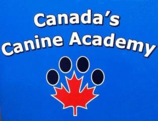 Canada's Canine Academy - Photo 1